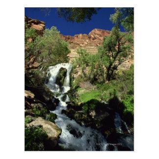 Waterfall 2 postcard