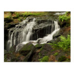 Waterfall 6 postcards