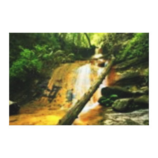 Waterfall and Fallen Tree in the Forest Stretched Canvas Prints