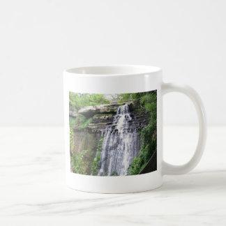 waterfall and greenery mugs