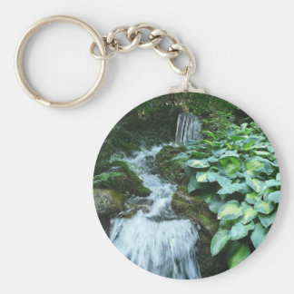 Waterfall and Hostas Basic Round Button Keychain