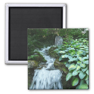 Waterfall and Hostas Magnet