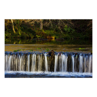 Waterfall and Riverbank Reflections Poster