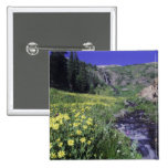Waterfall and wildflowers in alpine meadow, 2 2 inch square button