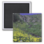 Waterfall and wildflowers in alpine meadow, 2 inch square magnet