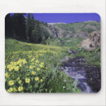 Waterfall and wildflowers in alpine meadow, 2 mouse pad