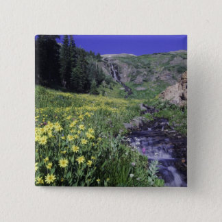 Waterfall and wildflowers in alpine meadow, 2 pinback button