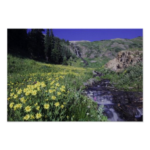 Waterfall and wildflowers in alpine meadow, 2 poster