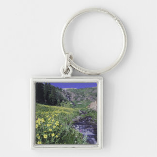 Waterfall and wildflowers in alpine meadow, 2 Silver-Colored square keychain