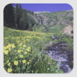 Waterfall and wildflowers in alpine meadow, 2 square sticker
