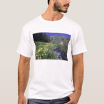 Waterfall and wildflowers in alpine meadow, 2 T-Shirt