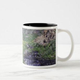 Waterfall and wildflowers in alpine meadow, 2 Two-Tone coffee mug