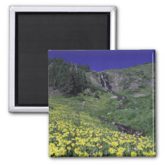 Waterfall and wildflowers in alpine meadow, 3 magnet
