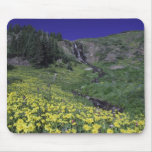 Waterfall and wildflowers in alpine meadow, 3 mouse pad