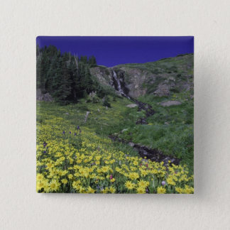 Waterfall and wildflowers in alpine meadow, 3 pinback button