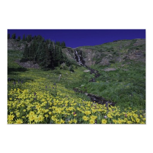 Waterfall and wildflowers in alpine meadow, 3 poster
