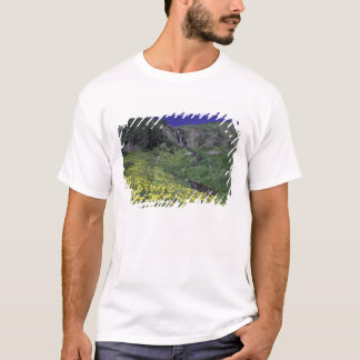 Waterfall and wildflowers in alpine meadow, 3 T-Shirt