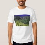 Waterfall and wildflowers in alpine meadow, 3 tee shirt