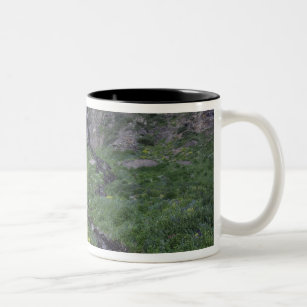 Waterfall and wildflowers in alpine meadow, 3 Two-Tone coffee mug