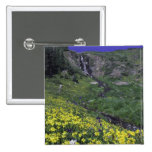 Waterfall and wildflowers in alpine meadow, button