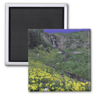 Waterfall and wildflowers in alpine meadow, magnet