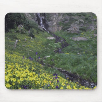 Waterfall and wildflowers in alpine meadow, mouse pad