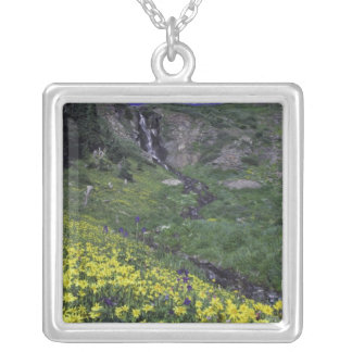 Waterfall and wildflowers in alpine meadow, pendant