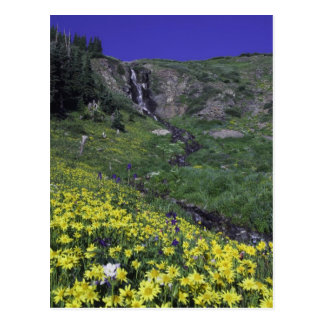 Waterfall and wildflowers in alpine meadow, postcard