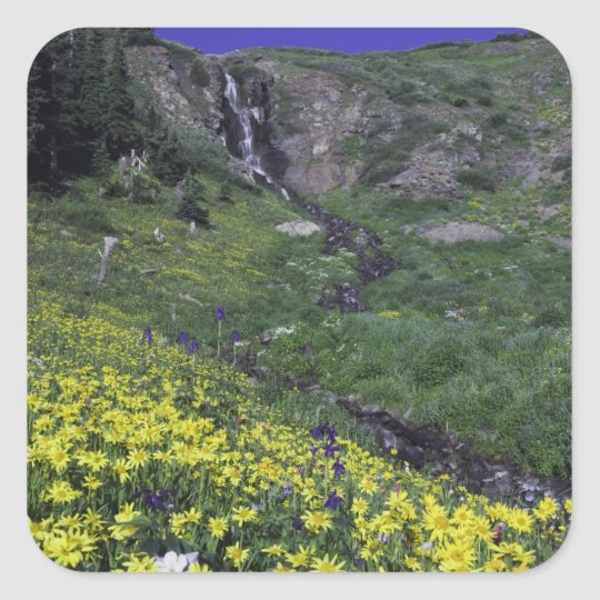 Waterfall and wildflowers in alpine meadow, square sticker