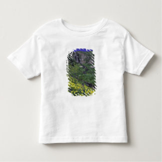 Waterfall and wildflowers in alpine meadow, toddler t-shirt