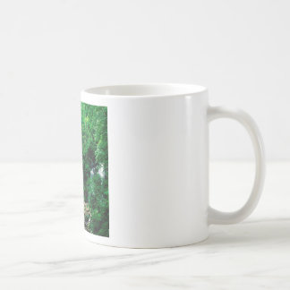 Waterfall Anna Ruby Chattahoochee Georgia Coffee Mug