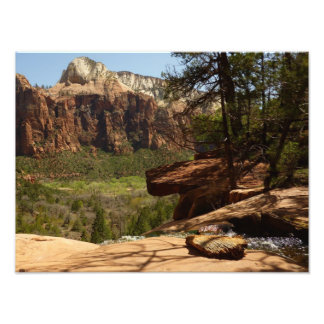 Waterfall at Emerald Pools in Zion National Park Photo Print