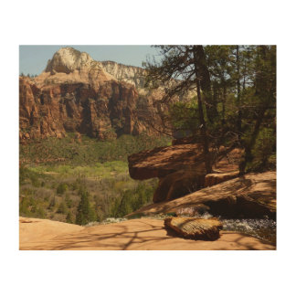 Waterfall at Emerald Pools in Zion National Park Wood Wall Decor