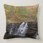 Waterfall at Laurel Hill State Park I Throw Pillow