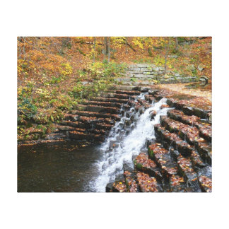 Waterfall at Laurel Hill State Park II Canvas Print