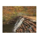 Waterfall at Laurel Hill State Park II Wood Print