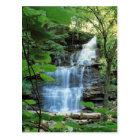 Waterfall at Rickets Glen State Park , Postcard