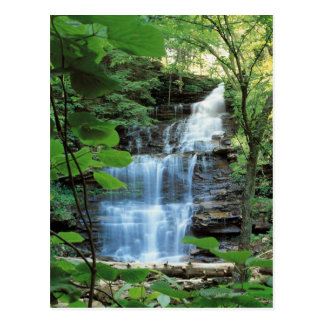 Waterfall at Rickets Glen State Park , Postcard