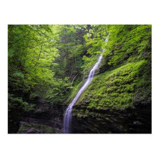 Waterfall at Watkins Glen, NY Postcard