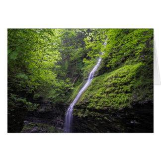 Waterfall at Watkins Glen, NY Stationery Note Card