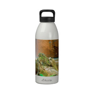 Waterfall Berry Big Basin Redwoods State Park Water Bottles