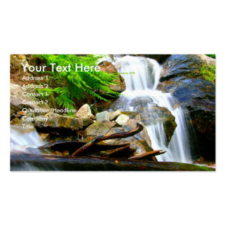 Waterfall Double-Sided Standard Business Cards (Pack Of 100)
