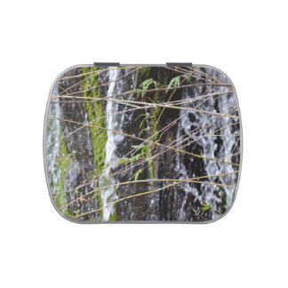 waterfall green moss twigs plant background jelly belly candy tin