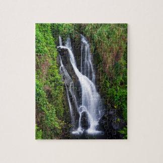 Waterfall, Hamakua coast, Hawaii Jigsaw Puzzle
