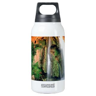 Waterfall Havasu Arizona Insulated Water Bottle