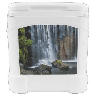 Waterfall Igloo Rolling Cooler