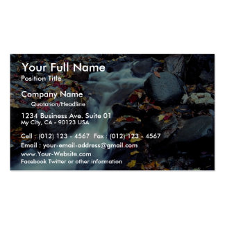 Waterfall in autumn near Capelton Estrie Quebec Business Cards