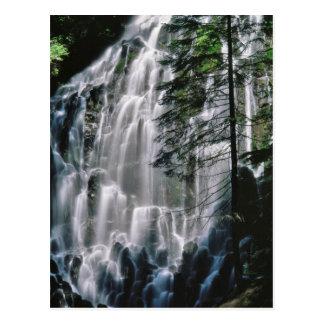 Waterfall in forest, Oregon Postcard