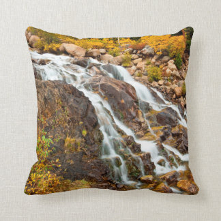 Waterfall In Grand Teton National Park Throw Pillow