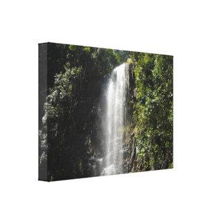 Waterfall in Kauai, Hawaii Stretched Canvas Prints
